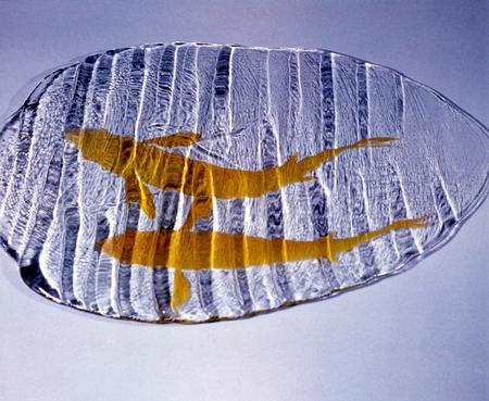 ironhand-glass-052.jpg